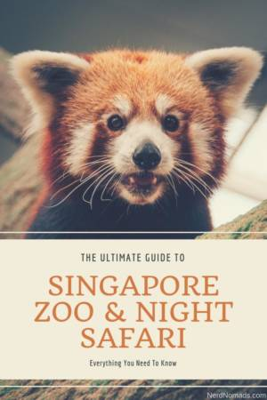 Guide to Singapore Zoo and Night Safari
