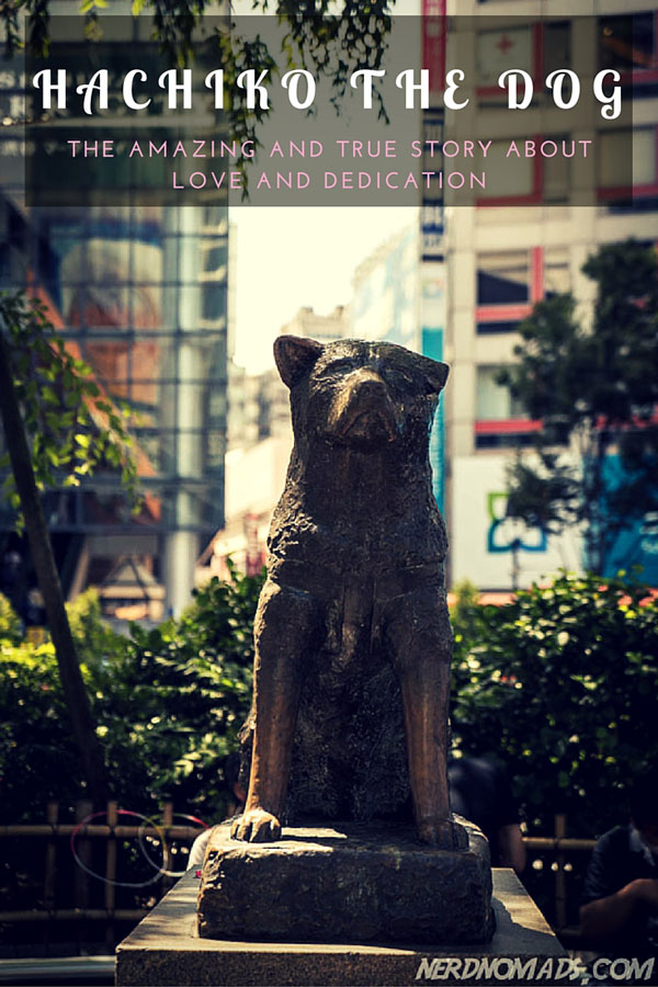 The true and amazing story about the Akita dog Hachiko, from the movie