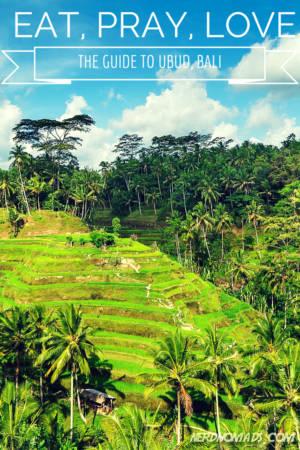 rice_terrace2