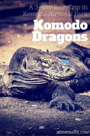 KOMODO-4
