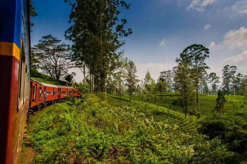 The view from the train between Ella and Kandy, Sri Lanka