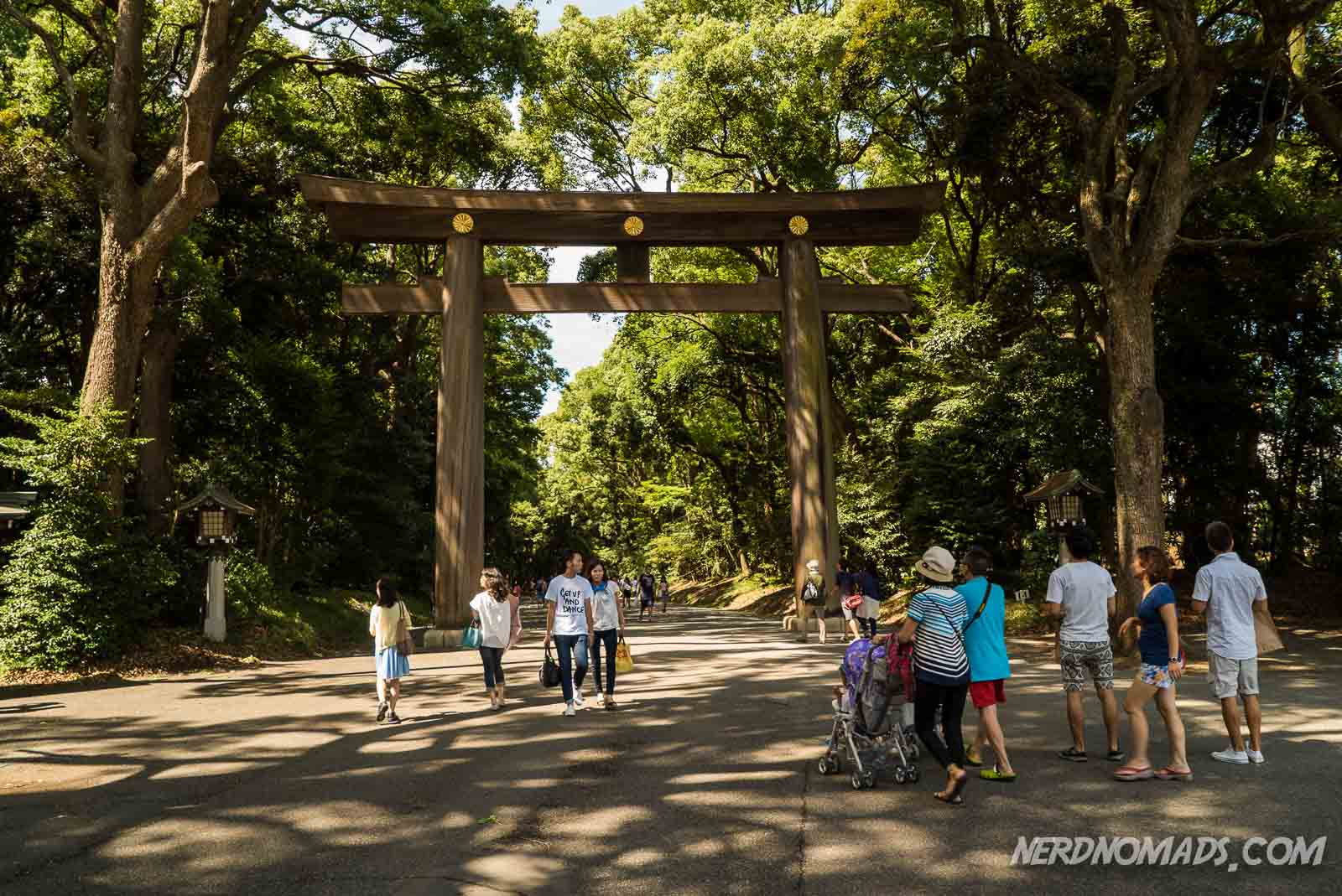 It Was Great Walking On The Broad Pathway Surrounded By Tall Green Trees And Eventually Through 12m High Wooden Torii Gate