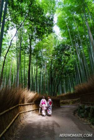 Kyoto Bamboo Forrest