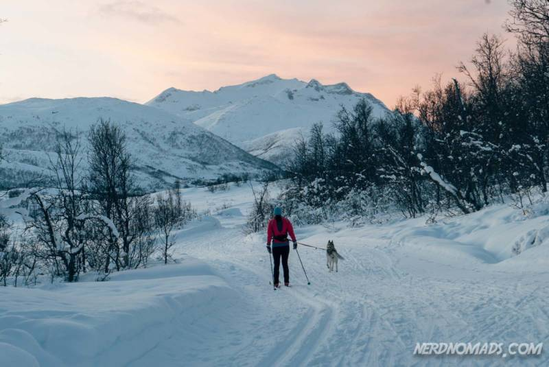 Cross-country skiing in Lysloypa
