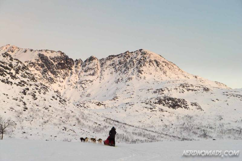 Dog sledding between majestic mountains in Tromso