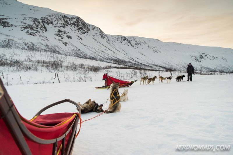 Having a break while dog sledding