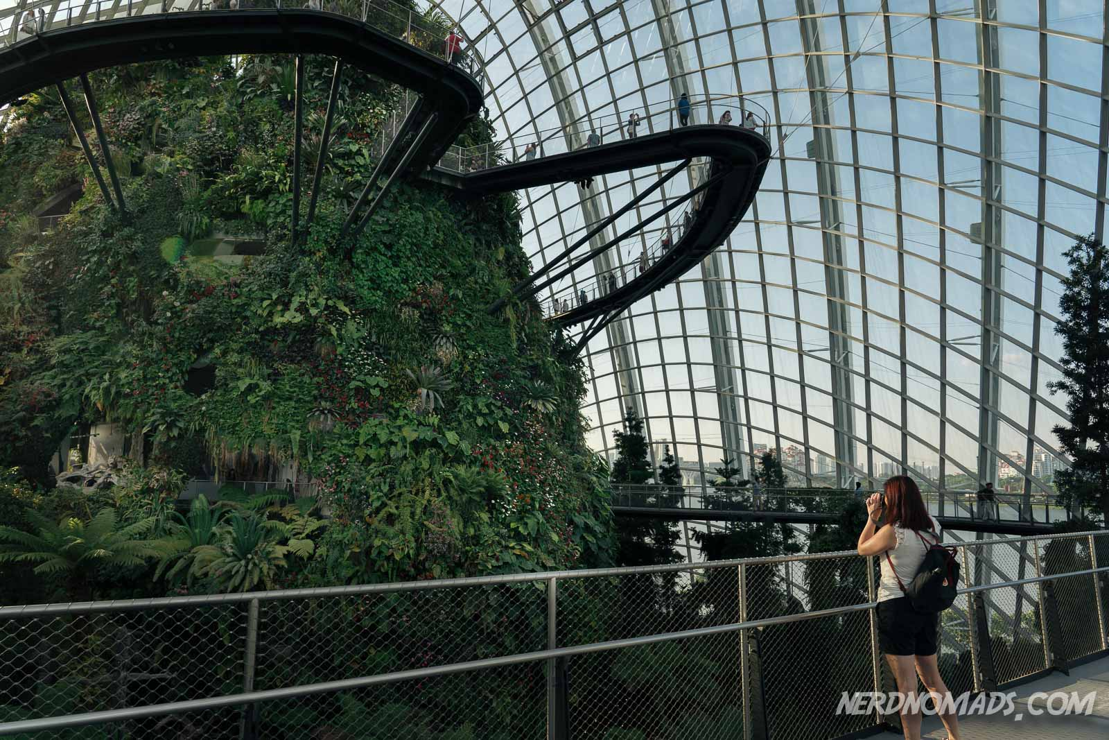 Gardens By The Bay - Singapore - Nerd Nomads
