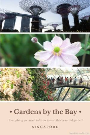 Guide to Gardens by the bay Singapore