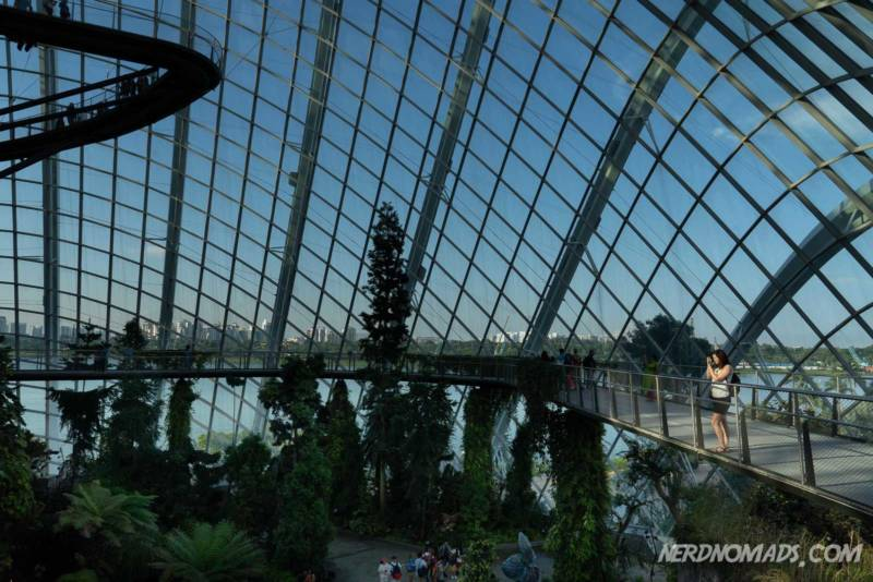Cloud Forest Dome Gardens by the bay Singapore