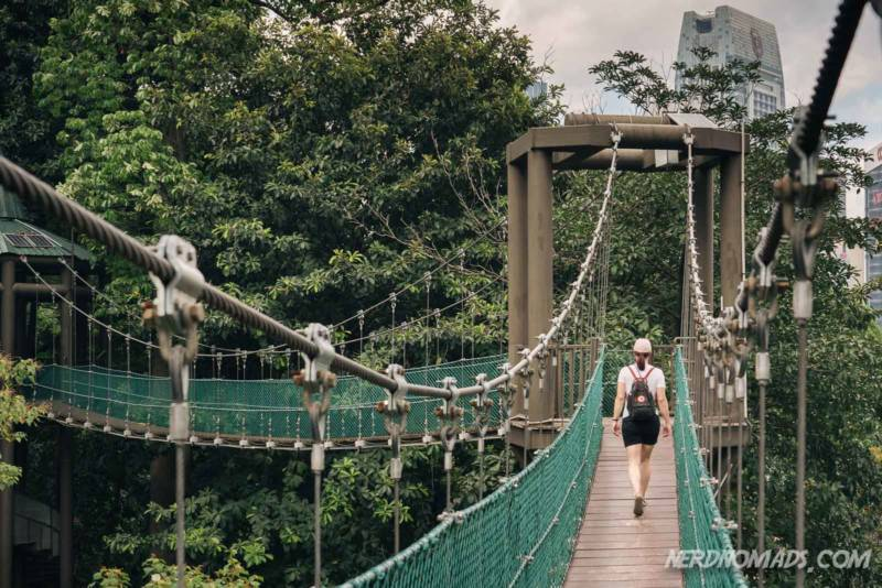Canopy Walkway KL Forest ECO Park