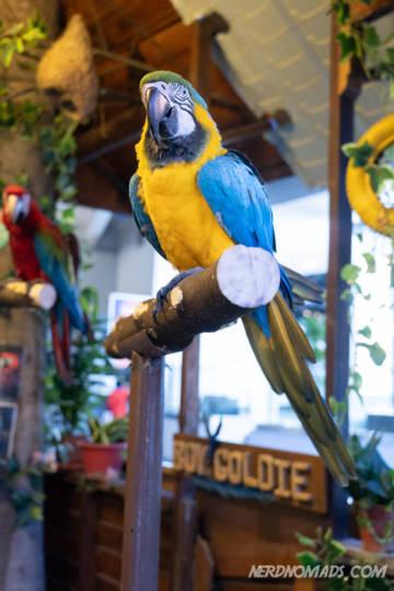 Mini Zoo KL Tower