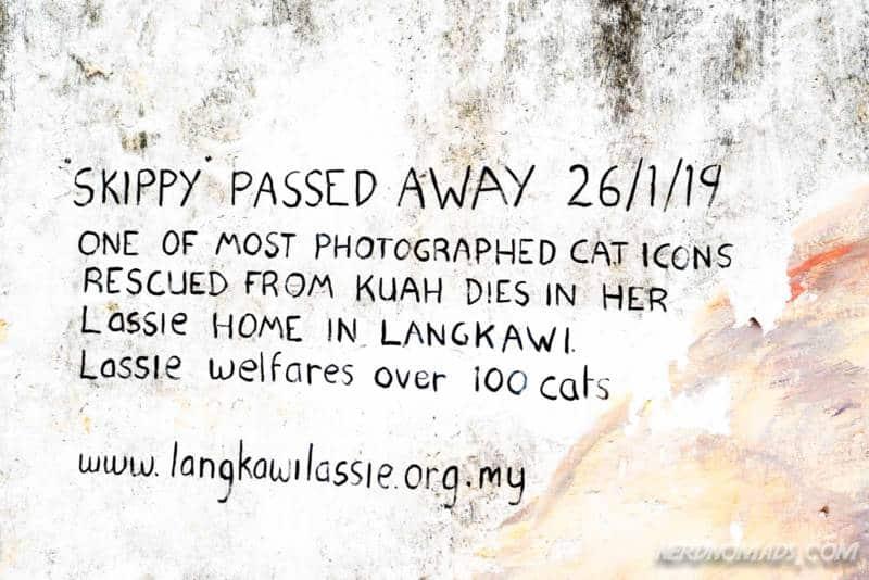 Skippy for Penang passed away