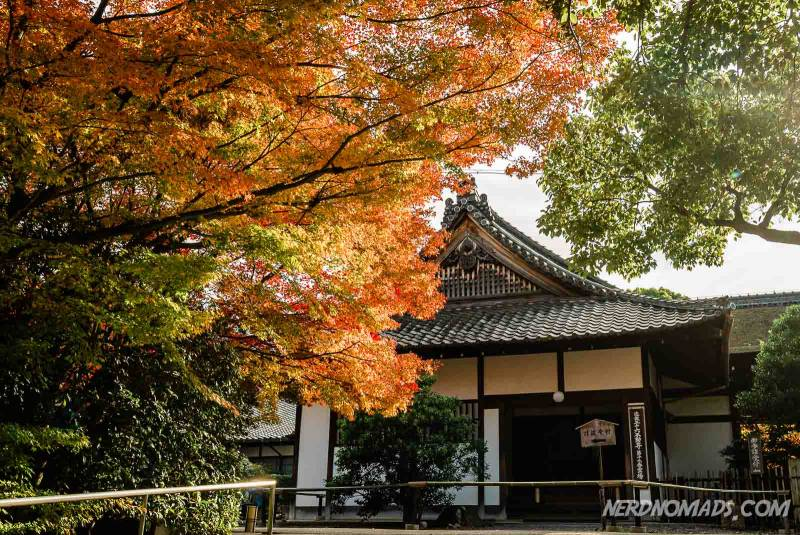 The lovely Shoren-in temple is a highlight when visiting kyoto