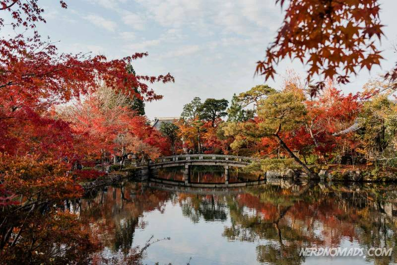 Eikando Temple is the most famous and popular autumn leaves spot in Kyoto