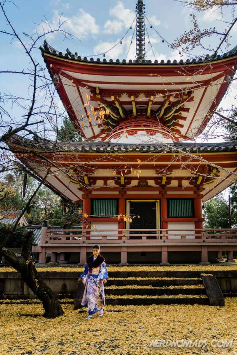 The beautiful pagoda at Chion-in Temple in Kyoto