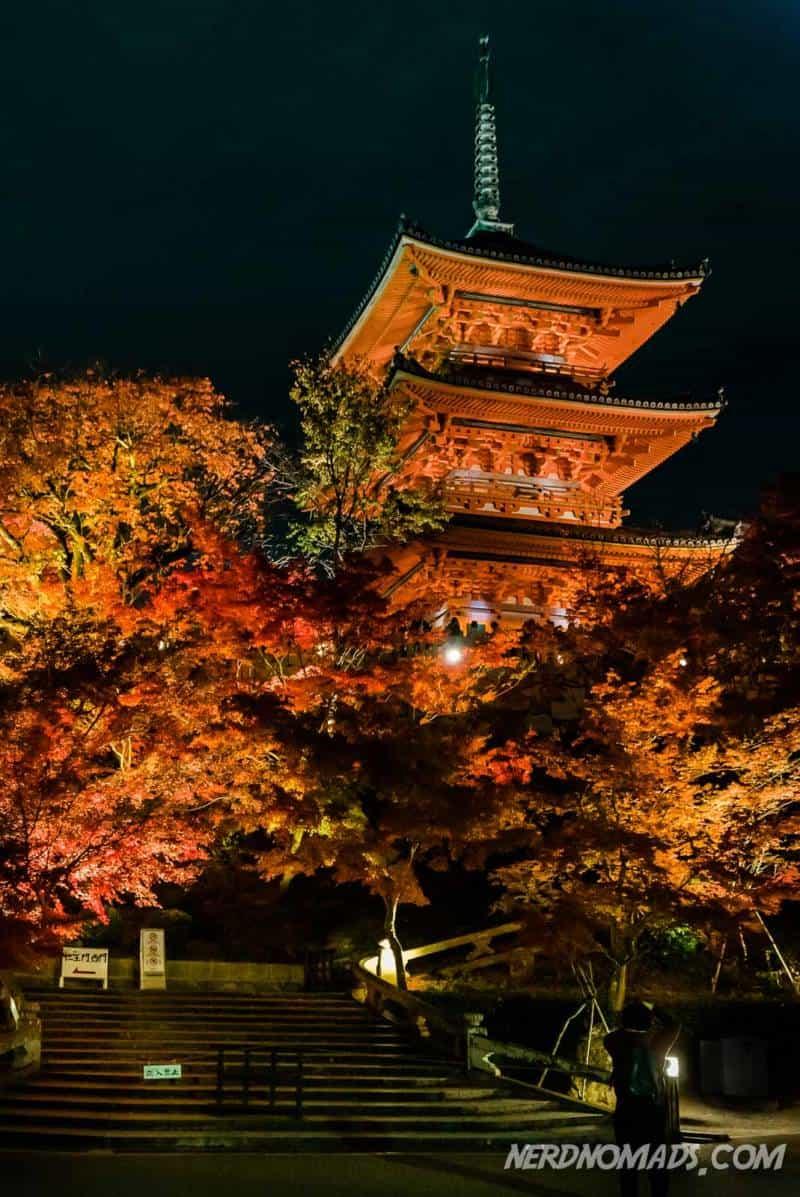 Night illumination autumn at Kiyomizu-dera Tempple