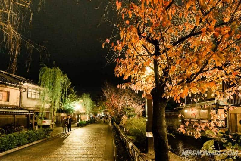 Shirakawa canal Gion Kyoto