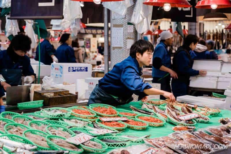 Lots of fresh fish at Omicho Market Kanazawa