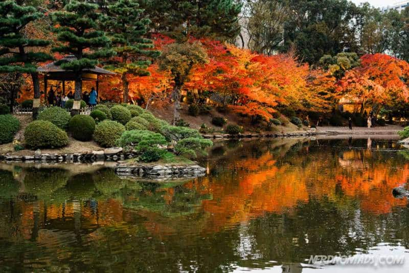 Stunning autumn colors in Shukkeien Garden Hiroshima Japan