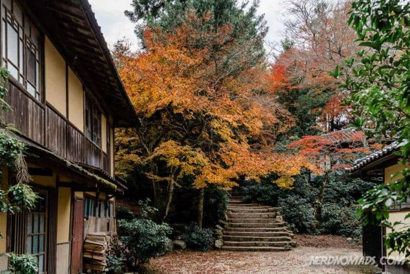 Autumn colors at Mount Misen Miyajima Ropeway
