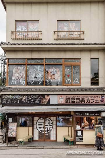 Owl bengal cat and shiba dog cafe in Miyajima Island Japan