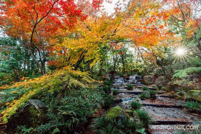 Autumn colors at Kokoen Japanese Garden next to Himeji Castle