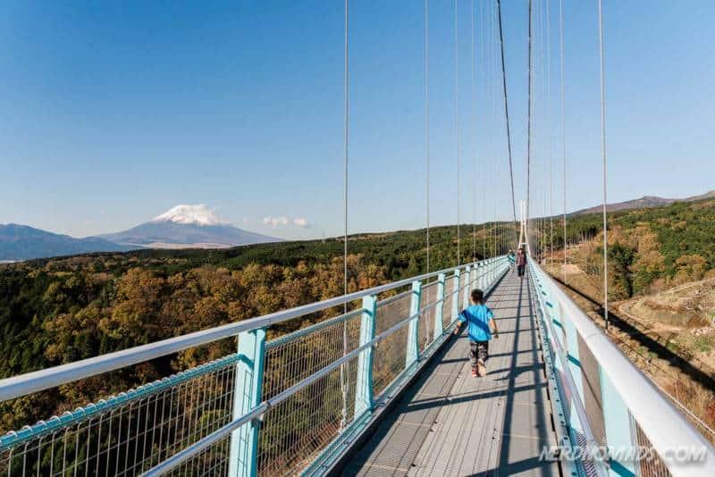 Mount Fuji and Mishima Skywalk in Hakone