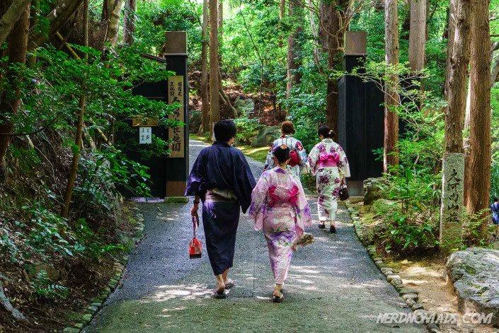 Kimono Kyoto Bamboo Grove