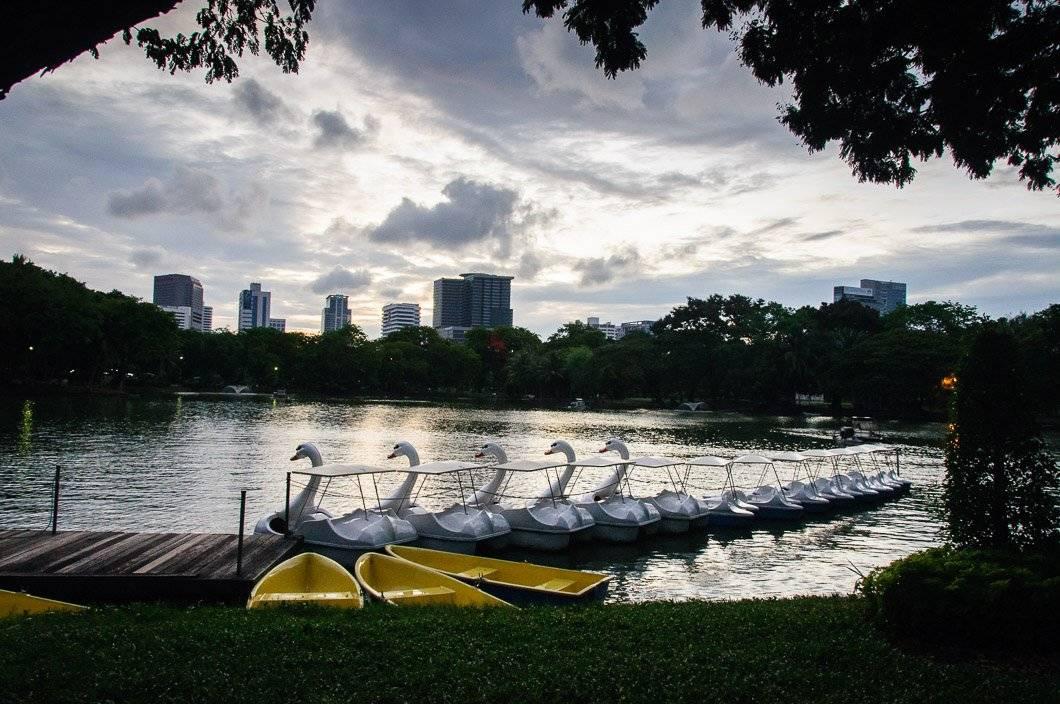 A Green Oasis – Lumphini Park, Bangkok