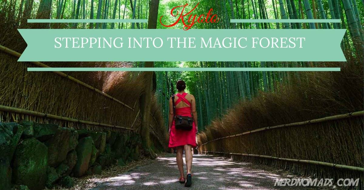 Stepping Into The Magic Forest – Bamboo Grove Kyoto