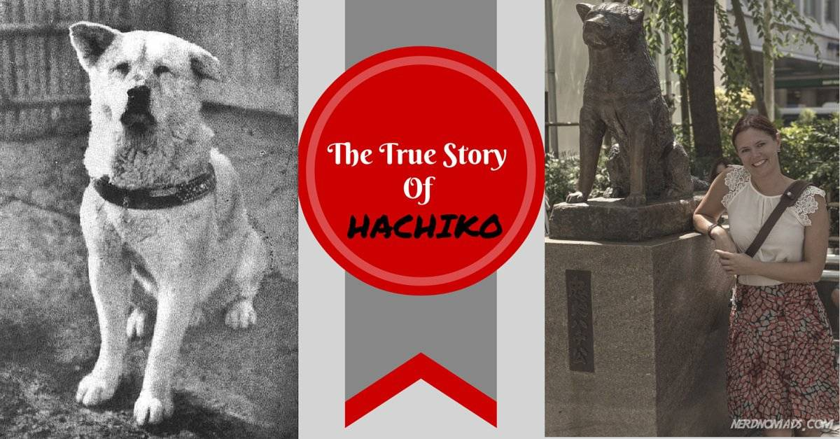 The Amazing And True Story Of Hachiko Dog